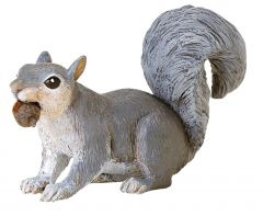 Squirrel (Gray) Model