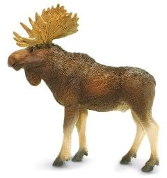 Moose (Bull) Model