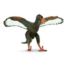 Archaeopteryx Model