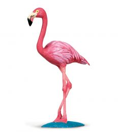 Flamingo Model