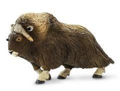 Ox (Musk) Model
