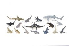 Sharks & Rays Model Collection (Discounted Set of 16 Models
