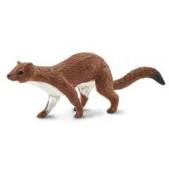 Weasel Model