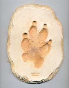 Wolf (Gray) Track Cast (Large Plaque)