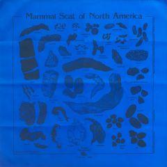 Royal Blue Scat Scarf (Acorn Naturalists' Identification Bandana)