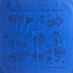 Royal Blue Track Scarf (Acorn Naturalists' Identification Bandana)