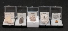 Mixed Mineral Specimens (Set of 5)