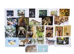 Greeting Card Grab Bag (25 Cards)