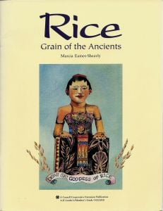 Rice: Grain of the Ancients