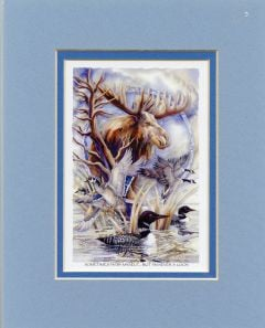 Moose & Water Birds Never A Loon Print