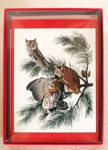 Audubon's Owls Holiday Boxed Notes