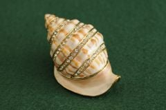 Shell Bejeweled Enamel Trinket Box