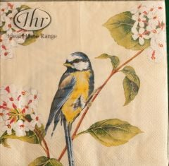 Early Bird Lunch Napkins