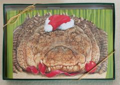 Gator Greetings Holiday Boxed Notes