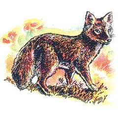 Fox (Kit) Rubber Stamp