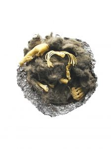 Owl Pellet Replica: Vole Skeleton (Perfect Pellet®)