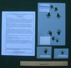 Rat (Wood) Tracking Stencils