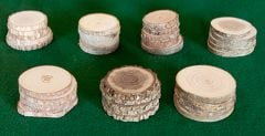 Botanical Grade Tree Rounds: Eastern Classroom Collection (Discounted Set of 30: 5 Each of 6 Species)