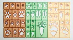 Trace-A-Track® Track Stencil Collection (Discounted Set of 3 Stencil Sets)