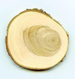 Juniper Tree Round