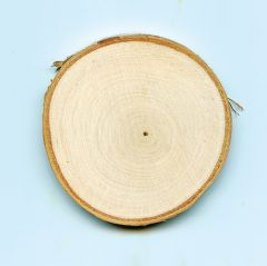 Create with Nature®: Tree Rounds (Undrilled, 18 Pack)
