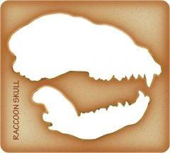 Raccoon Trace-A-Skull® Template