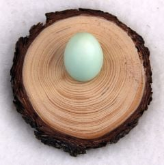 Natural Pine Egg Stand (Small)