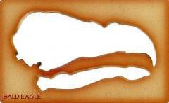 Eagle (Bald) Trace-A-Skull® Template.