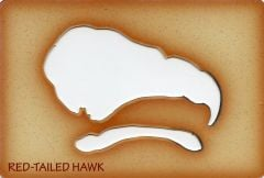 Hawk (Red-Tailed) Trace-A-Skull® Template.