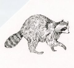 Raccoon Rubber Stamp