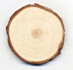 Pine (Red) Tree Round