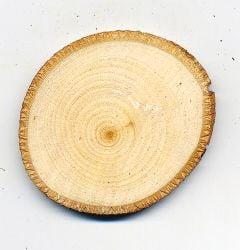 Basswood Tree Round