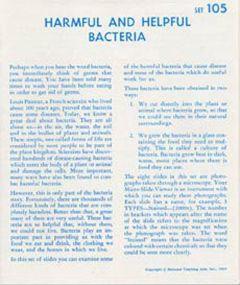 Bacteria (Microslide® Lesson Set)