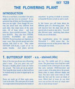 Flowering Plant, The (Microslide® Lesson Set)