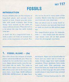 Fossils (Microslide® Lesson Set)
