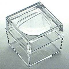 Bug Box (large, clear lucite magnifying chamber)