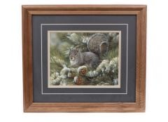 Gray Squirrel Framed Print (8