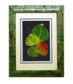 Aspen Leaf Shadowbox Framed Art