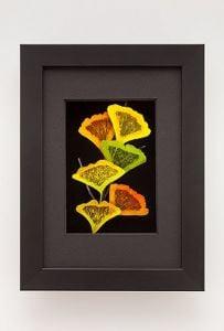 Ginkgo Leaf Shadowbox Framed Art
