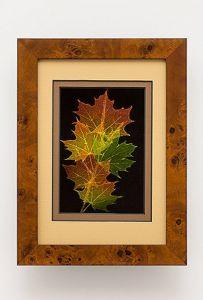 Norway Maple Leaf Shadowbox Framed Art