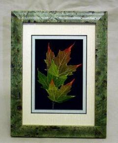 Sugar Maple Leaf Shadowbox Framed Art
