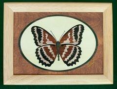 Butterfly Wood Box (6