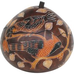 North American Birds Gourd Box