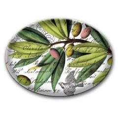 Olive Grove Glass Soap Dish