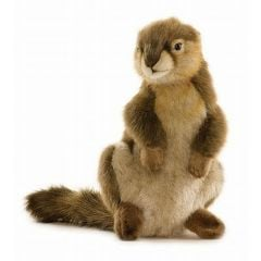 Ground Squirrel (Hansa Plush)