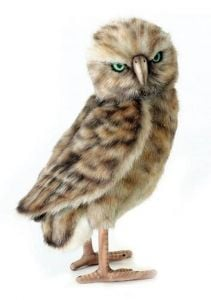 Burrowing Owl (Hansa Plush)