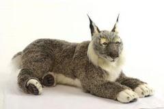 Lynx (Hansa Plush)