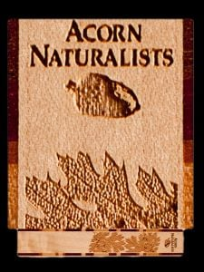 Acorn Naturalists Wood Bookmark