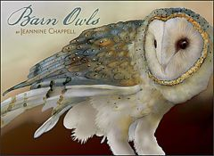 Barn Owls by Jeannine Chappell (Boxed Notecards)