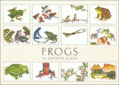 Frogs (Boxed Notecards)